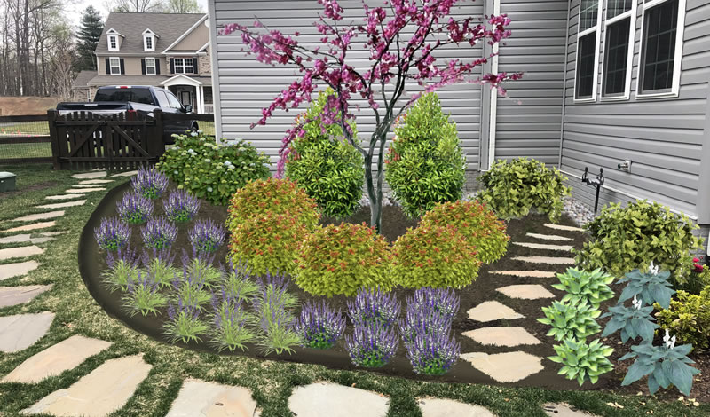 Landscape Design After Photo