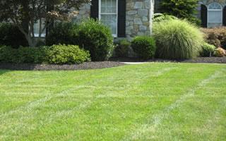 Lawn Care Services Centreville & North Virginia.