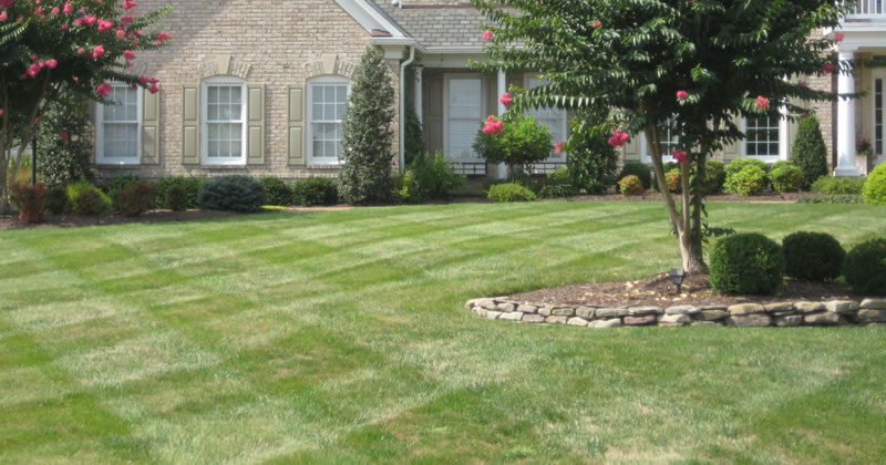 Lawn Mowed By Prosperity Lawn & Landscape