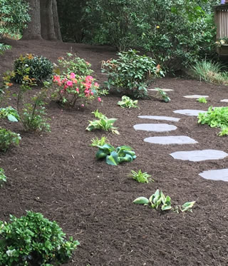 Xeriscaping Low Maintenance Gardens